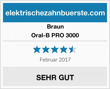 Braun Oral-B PRO 3000 Test