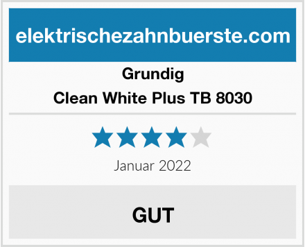 Grundig Clean White Plus TB 8030 Test